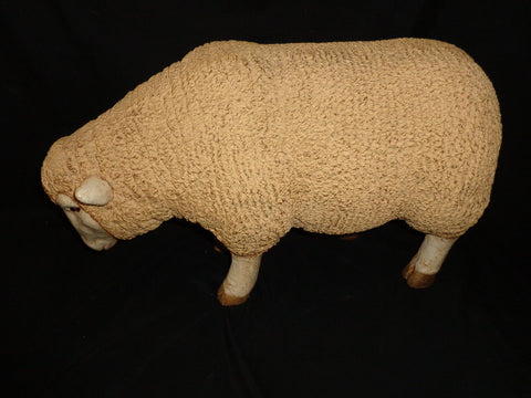 Sheep with Head Down