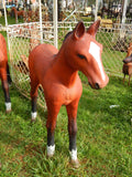Foal Life Size Display Statue