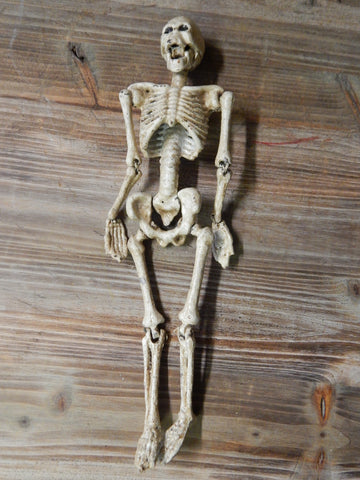 Cast Iron - Human Anatomical Skeleton