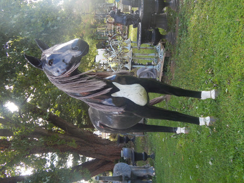 Statue - Life Size 7ft Black Horse