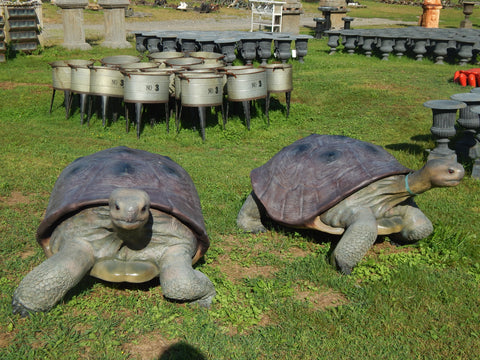 Statue - Life Size Realistic Animal Galapagos Tortoise