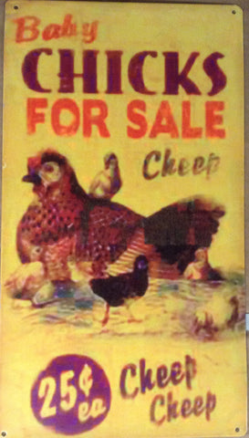 Flat Tin Sign - Baby Chicks for Sale
