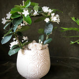 Stephanotis Wreath