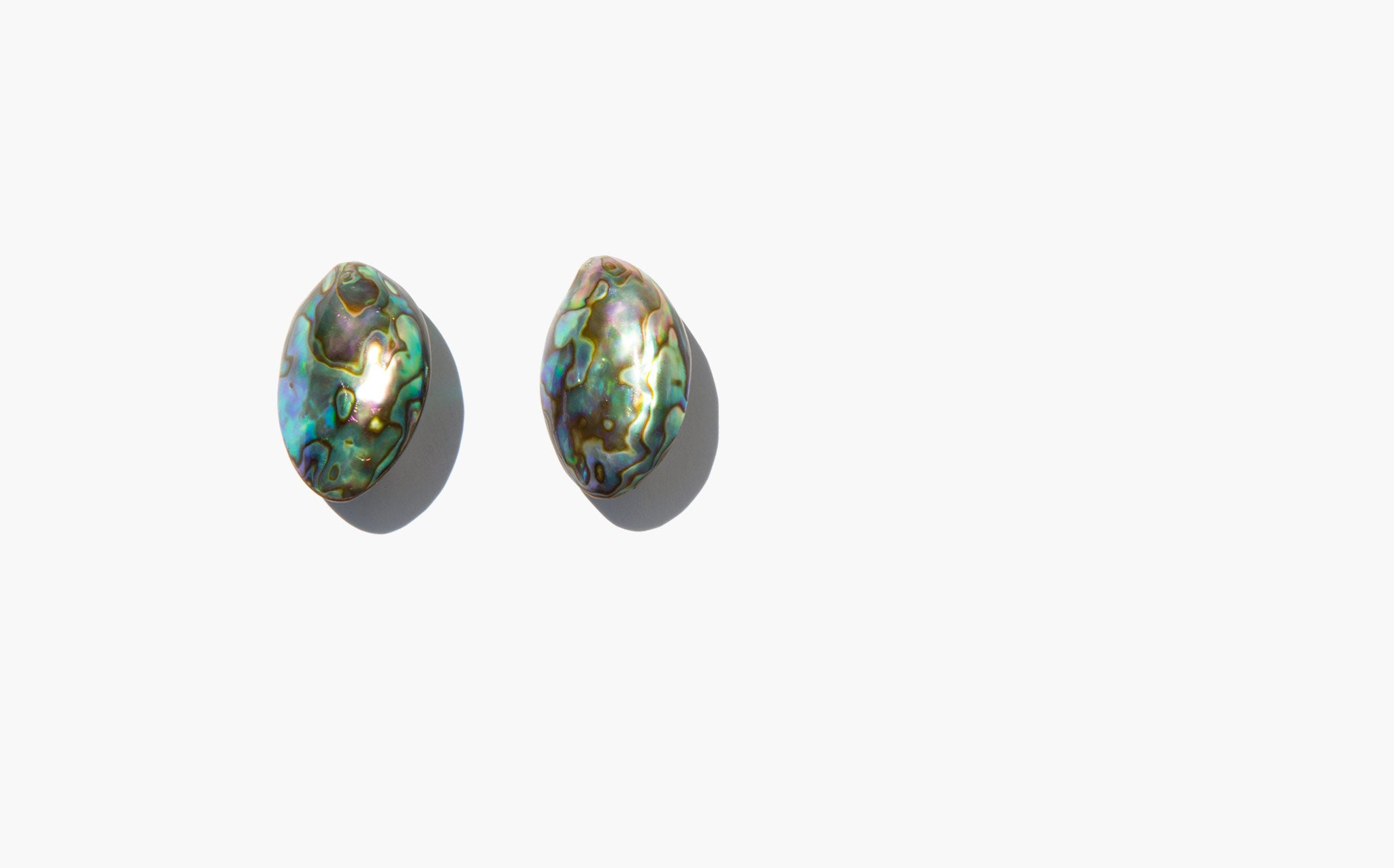Pangaea Earrings