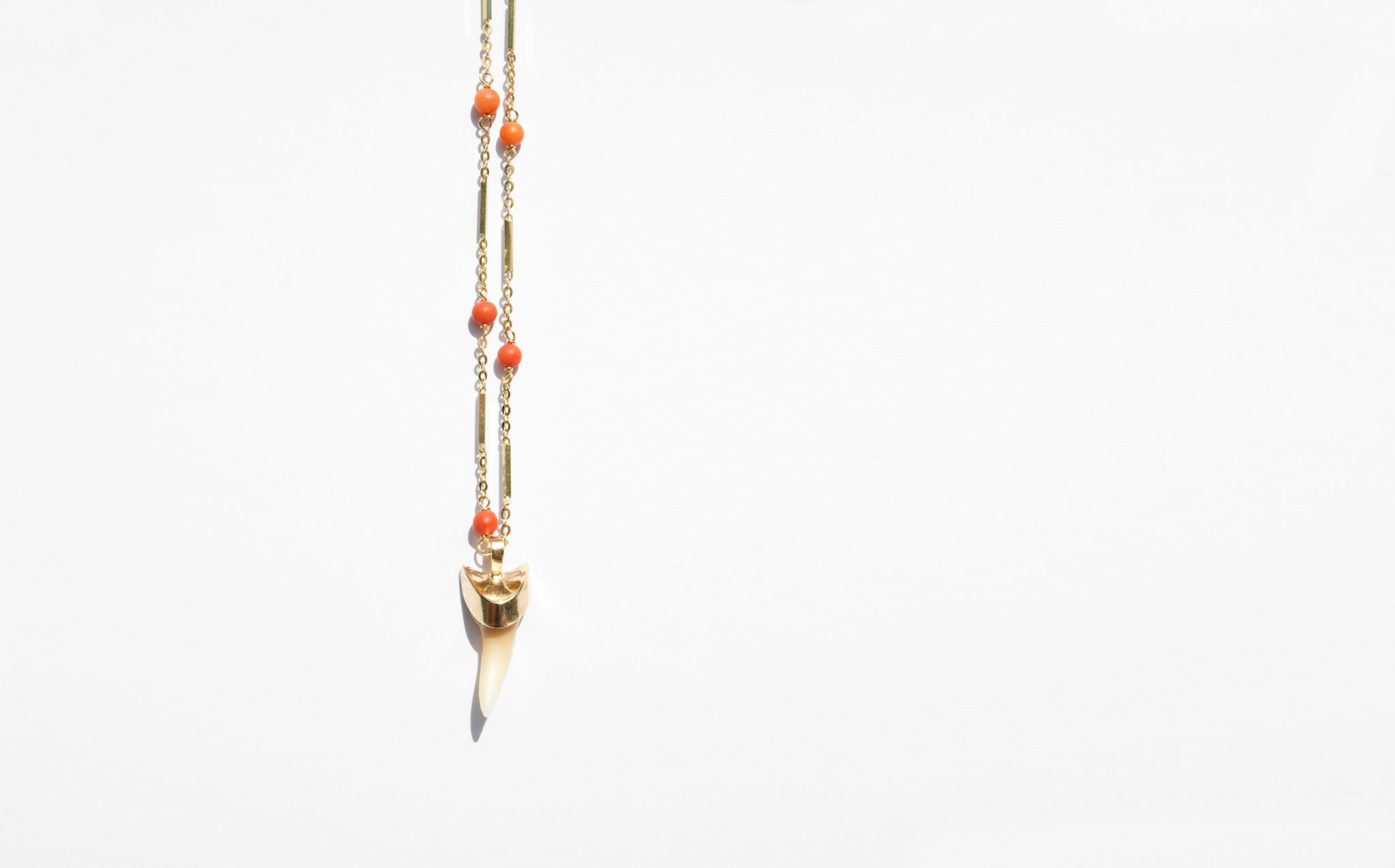 Shark Tooth and Coral Necklace