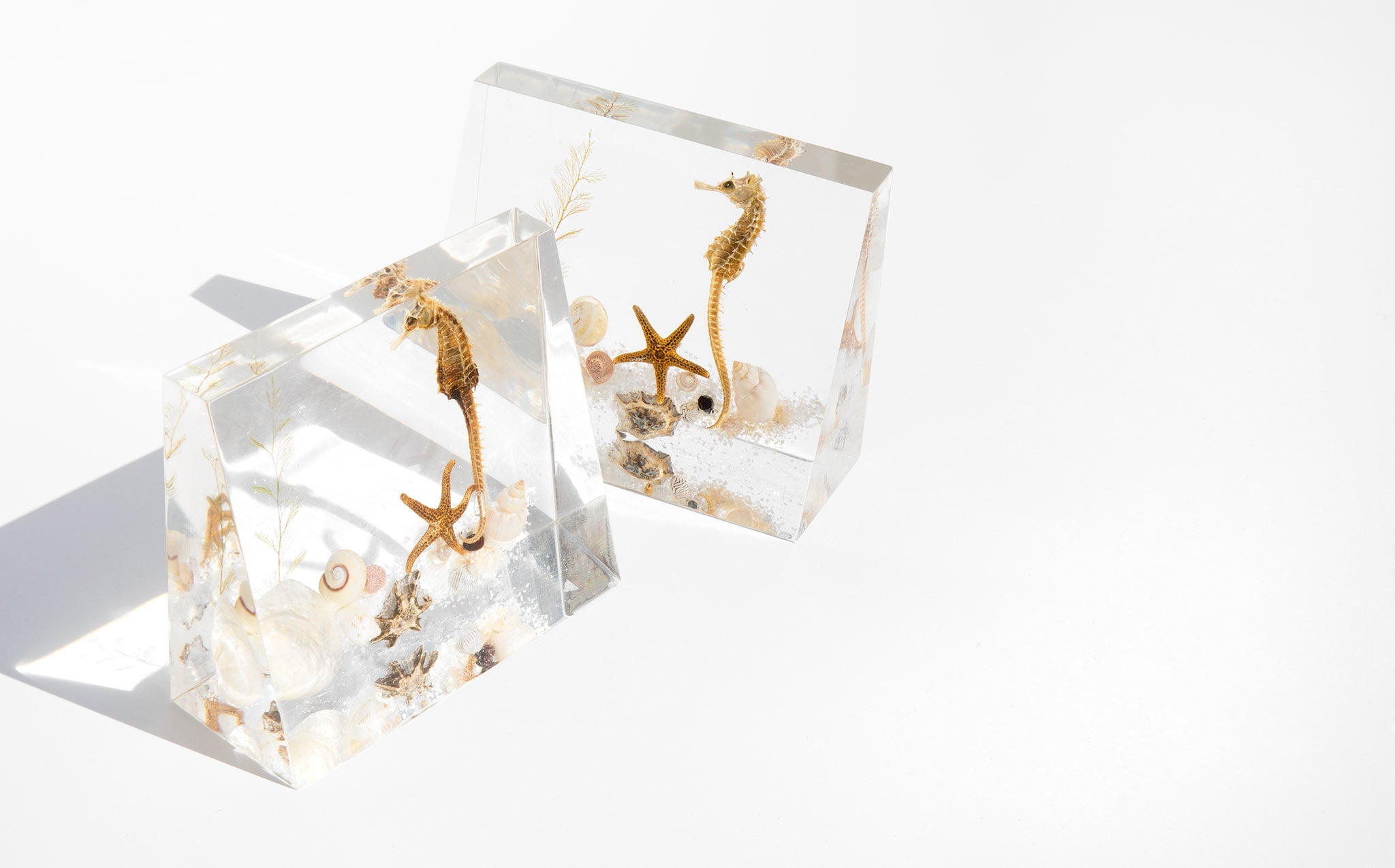 Summer Sea Lucite Bookends