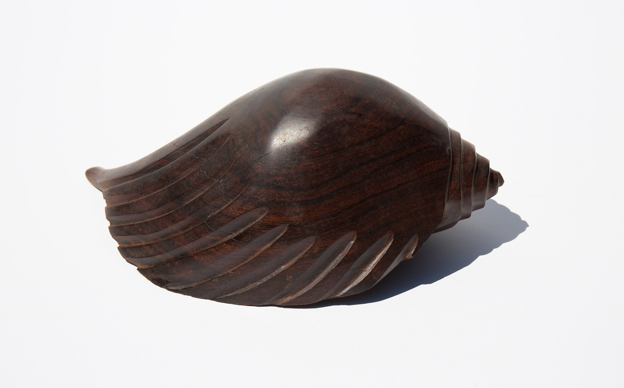 Carved Ironwood Conch Shell
