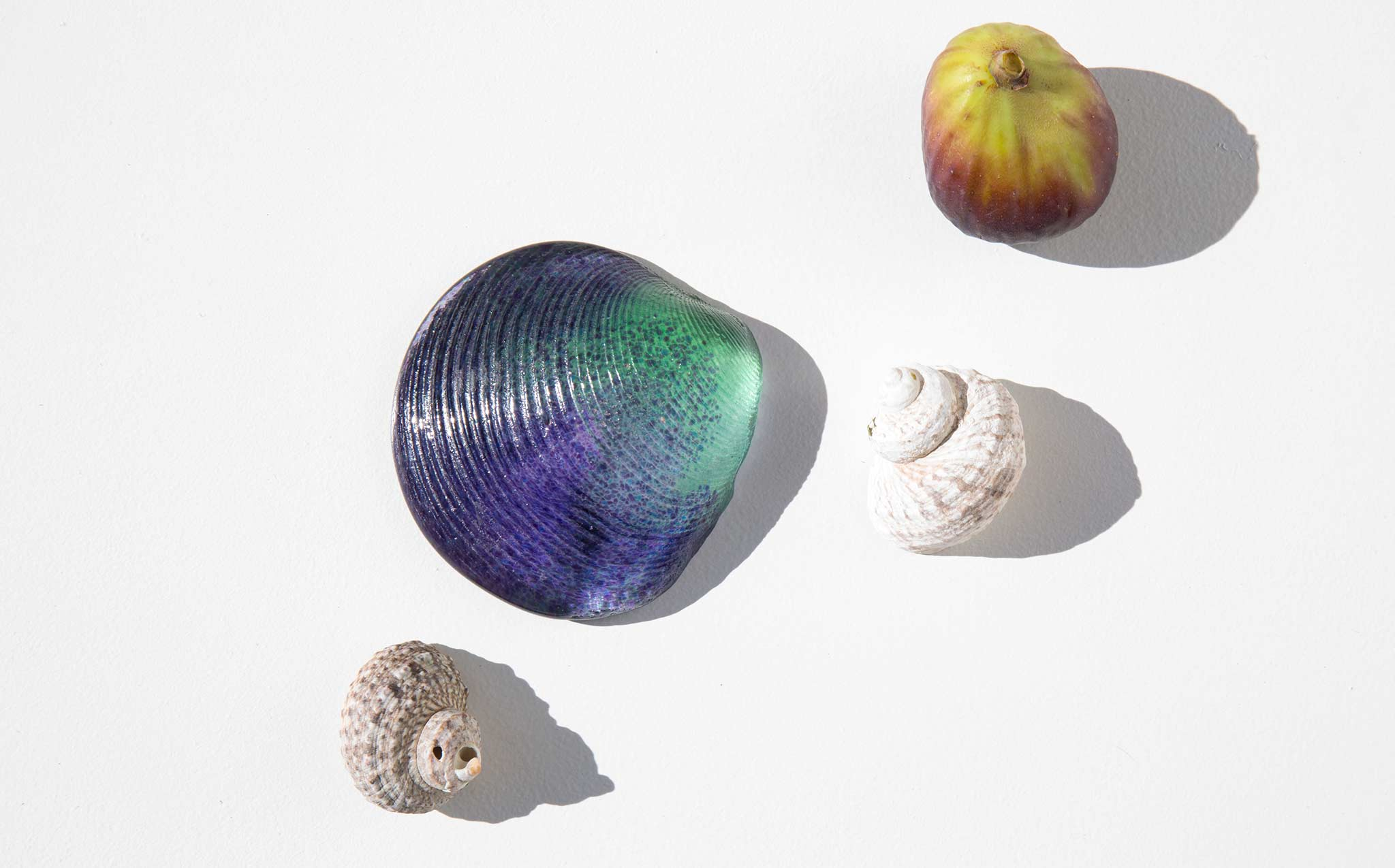 Ombre Glass Clam Shell