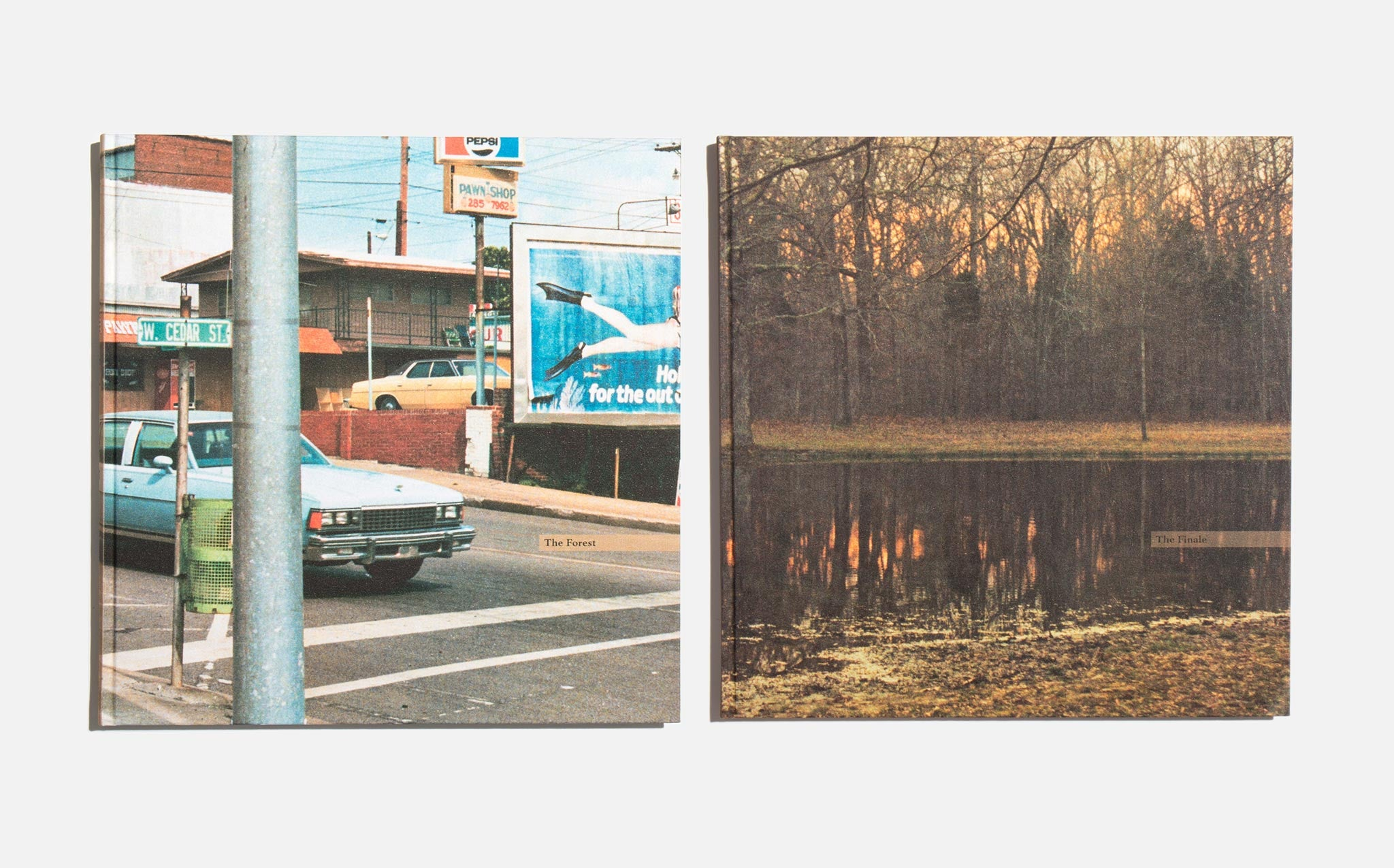 The Democratic Forest - William Eggleston
