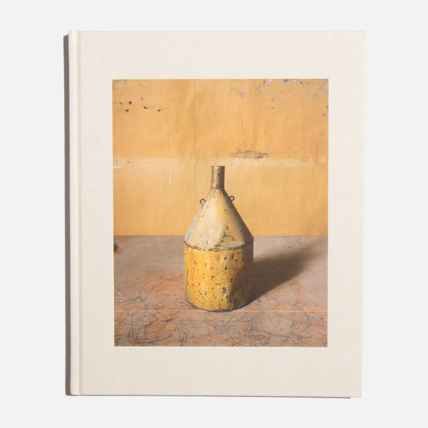Morandi's Objects - Joel Meyerowitz
