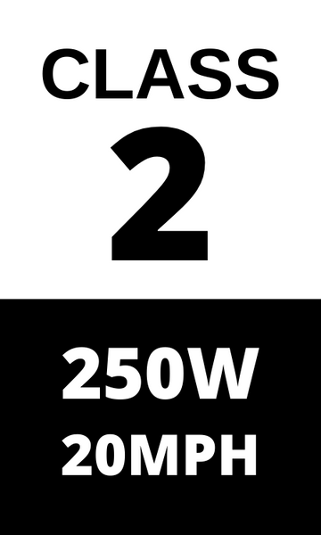 Class 2 250 Watt - Pack of 2