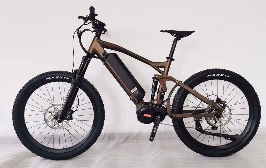 The RAPTOR Ultra Mountain eBike