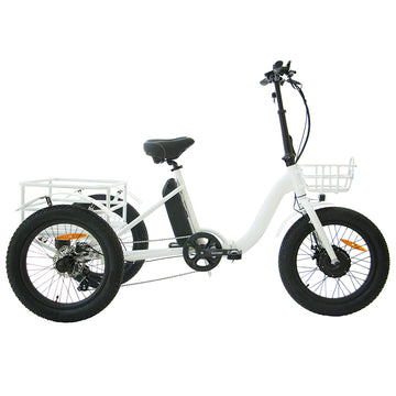 The Galaxy Fat Trike - Backorder for early March Shipping