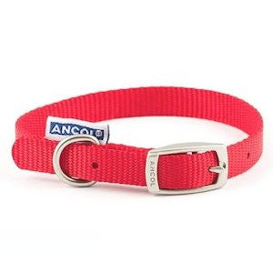 Ancol Red Nylon Dog Collar,Dog Collars,Ancol,Animal World UK - Animal World UK