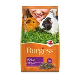 Burgess Excel Nuggets with Blackcurrant & Oregano Guinea Pig Food,Guinea Pig Food,Burgess,Animal World UK - Animal World UK