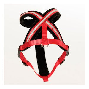 Company of Animals Comfy Dog Harness,Dog Harness,Company Of Animals,Animal World UK - Animal World UK