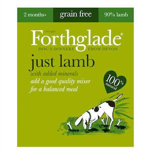Forthglade Just Lamb Wet Dog Food