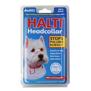 Halti Dog Headcollar,Dog Collars,Company Of Animals,Animal World UK - Animal World UK