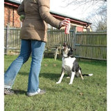 Pet Corrector Dog Training Aid,Dog Training,Company Of Animals,Animal World UK - Animal World UK