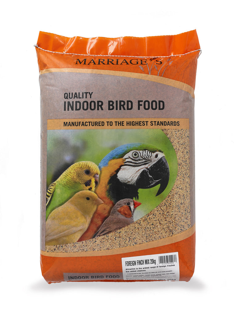 Marriages Foreign Finch Food