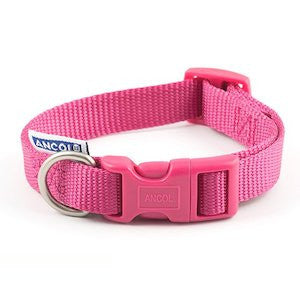 Raspberry Adjustable Nylon Dog Collar,Dog Collars,Ancol,Animal World UK - Animal World UK