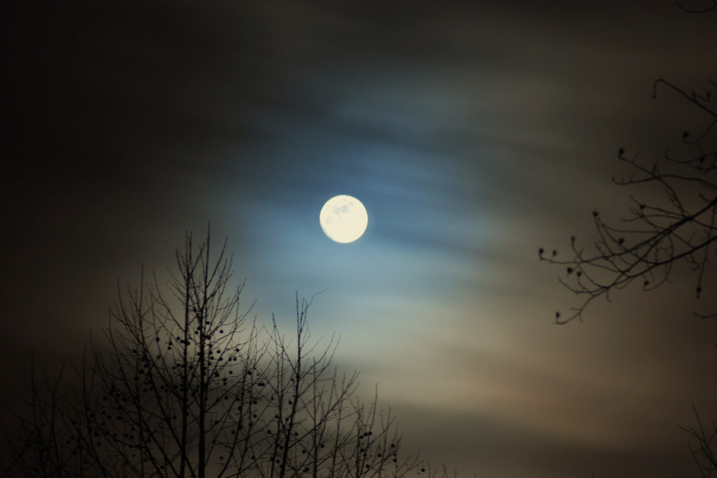 SPECTACULAR MARCH MICRO MOON is Happening Now: What to Know