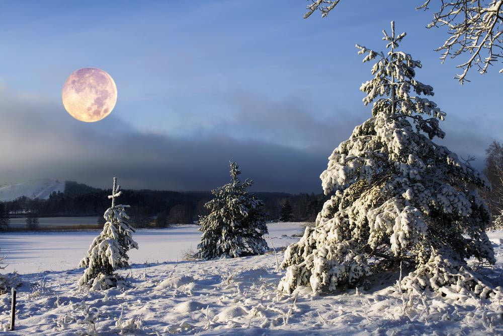 Snow Moon February Plus Comet: What Not To Miss