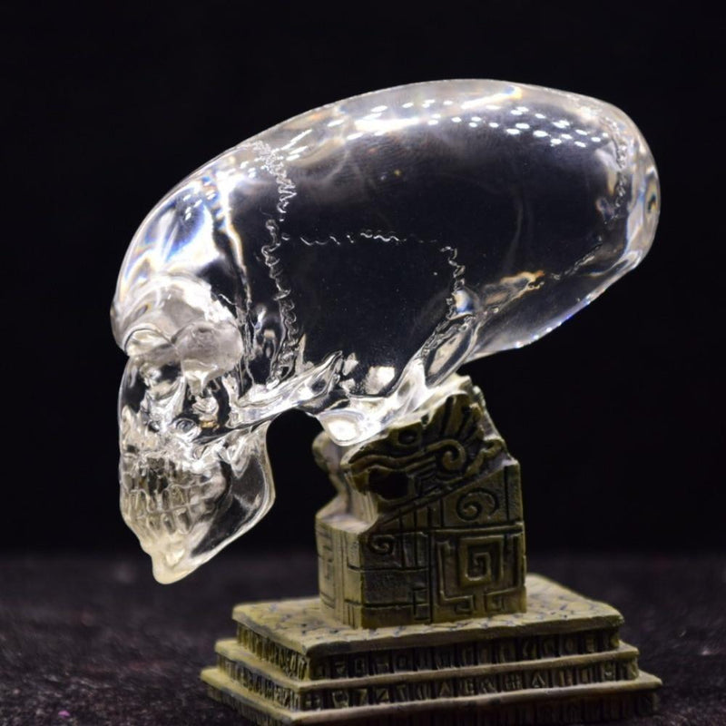 Transparent Crystal Glass Skull