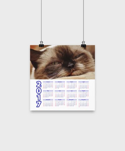 "British Shorthair - Calendar Poster 10""x10"" - Unique Gifts Store"