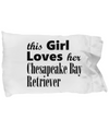 Chesapeake Bay Retriever - Pillow Case - Unique Gifts Store