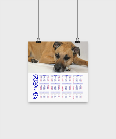 "Black Mouth Cur - Calendar Poster 10""x10"" - Unique Gifts Store"