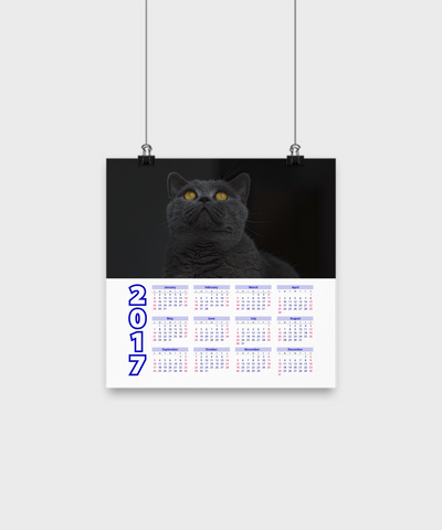 "British Shorthair - Calendar Poster 10""x10"" v3 - Unique Gifts Store"