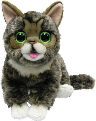 10 Inch Little Bub - The Amazing Cat - Plush Toy