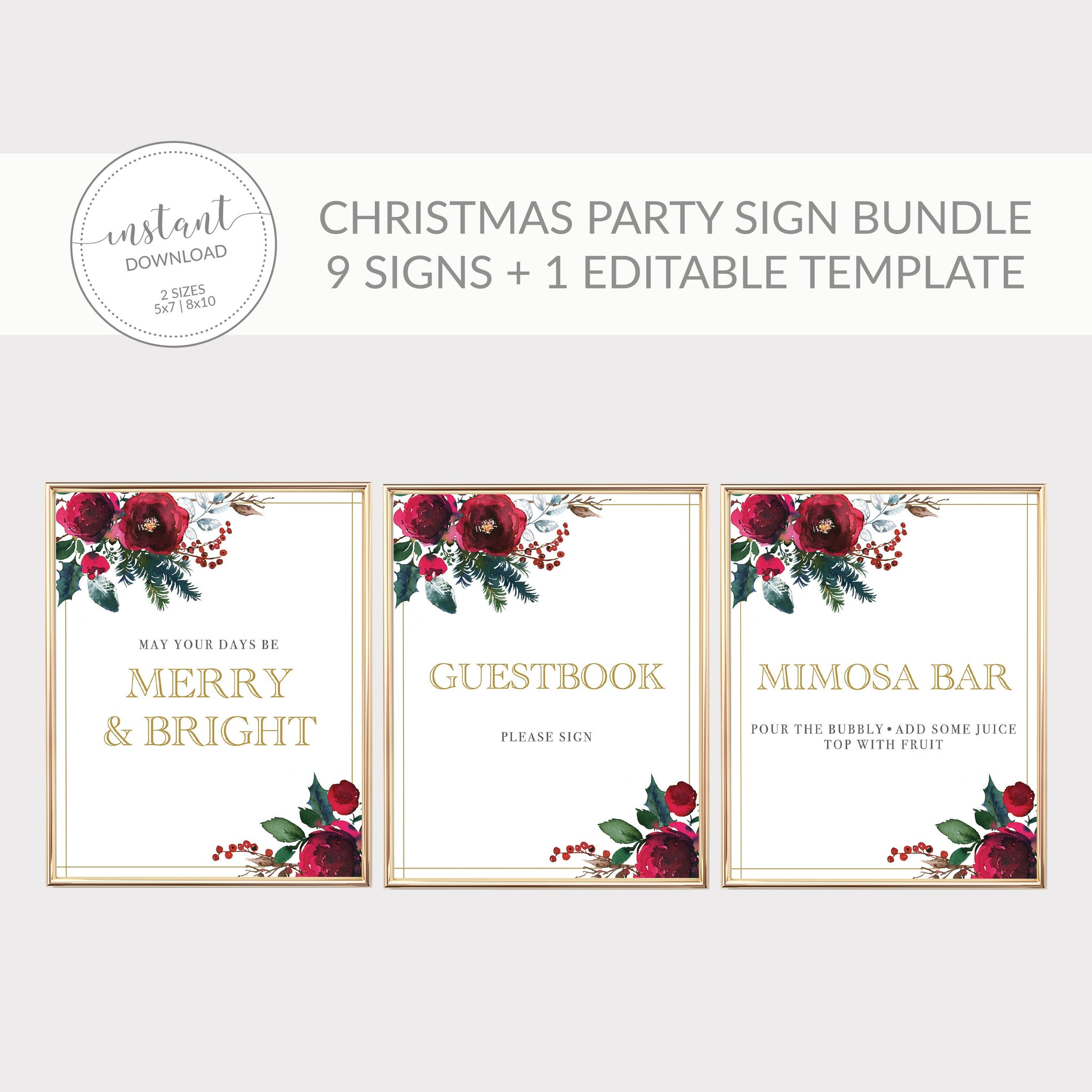 Christmas Party Sign Bundle, Christmas Party Decorations, Holiday Party Decor, Christmas Birthday Party Decorations, DIGITAL DOWNLOAD CG100