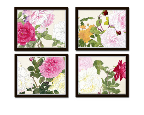Garden Study Botanical Print Set No. 10