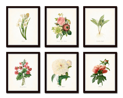 Botanical Garden Floral Print Set No. 21