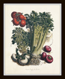 French Vegetable Print Set No. 5