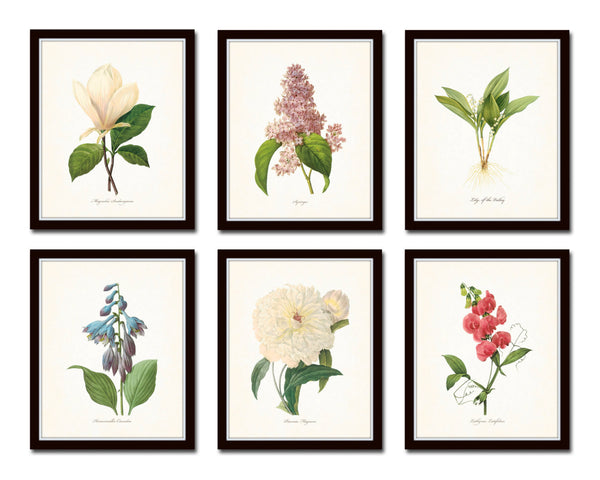 Botanical Garden Floral Print Set No. 17