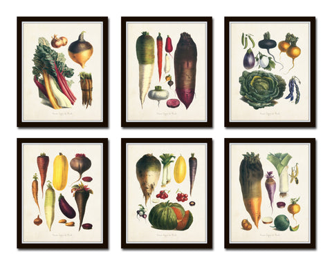 French Vegetable Print Set No. 6