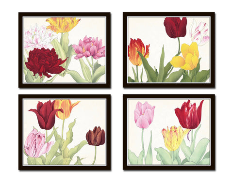 Tulips Floral Print Set No. 3
