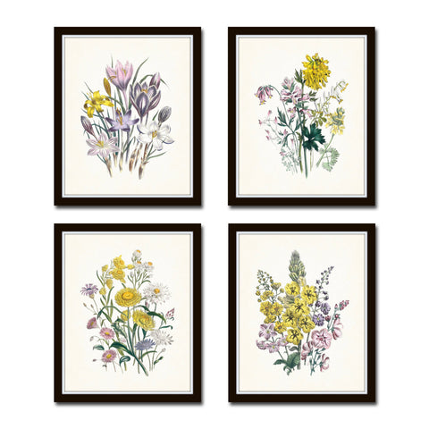 Spring Garden Botanical Print Set No. 6 - Fine Art Giclee Prints
