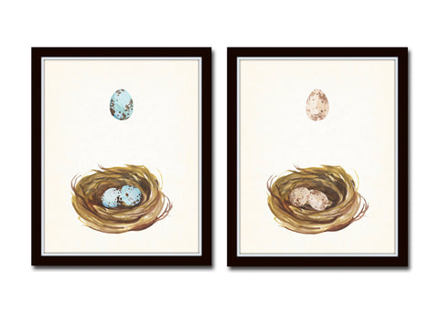 Watercolor Nest and Egg Print Set - Fine Art Giclee Prints