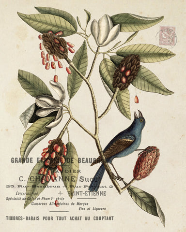 Vintage Botanical with Bird Collage No. 10