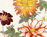 Vintage Japanese Woodblook Series 1 No. 26 - Botanical Print