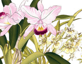 Tropical Woodblock Orchids Botanical Print No.2 - Giclee Print