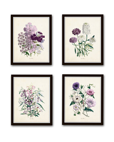 Les Fleurs Print Set No. 8 - Botanical Prints Set
