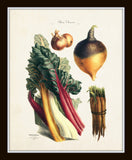 French Vegetable Print Set No. 4