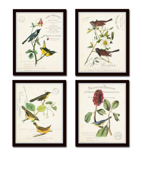 French Aviary Collage Print Set No. 3