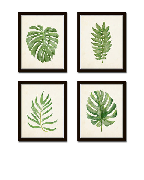 Watercolor Tropical Leaf Set No. 2