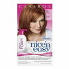 Clairol Nice N Easy Colour Blend Foam Hair Colour